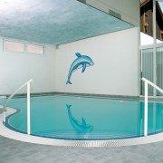 Hallenbadbau-Dolphins-Bay-01